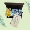 BOOK BOX SET - BAHASA INDONESIAN
