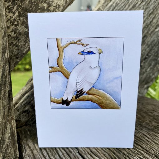 24 GRACE GREETING CARD